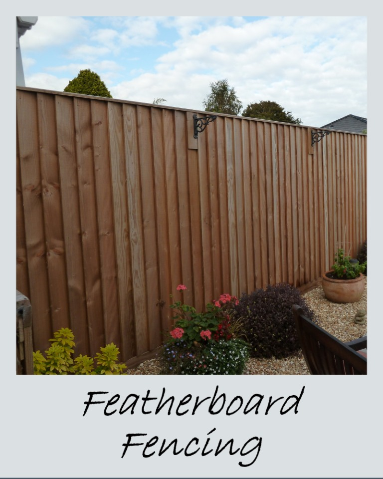 Featherboard Fencing