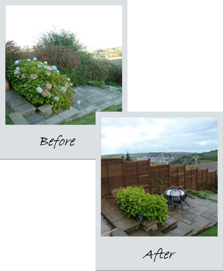 Panel Fencing: Before and After